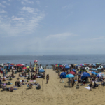 Ocean Fest 2017